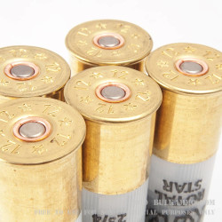 250 Rounds of 12ga Ammo by Rio - 1 ounce Rifled Slug