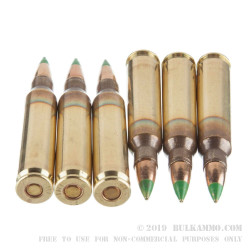 1200 Rounds of 5.56x45 Ammo by Israeli Military Industries - 62gr FMJ M855