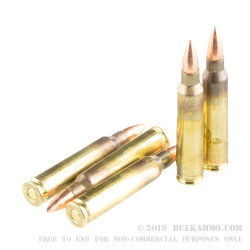 20 Rounds of .223 Ammo by Hornady Frontier - 55gr FMJ