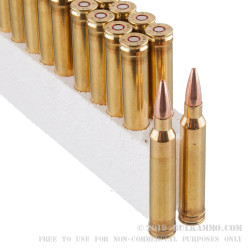 20 Rounds of .300 Win Mag Ammo by Black Hills Gold - 180gr TSX