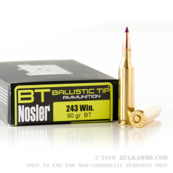 20 Rounds of .243 Win Ammo by Nosler Ammunition - 90gr Nosler Ballistic Tip