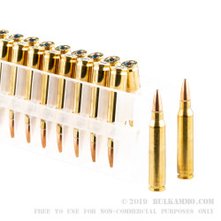 20 Rounds of .223 Ammo by Federal Tactical TRU - 55gr Sierra GameKing HPBT