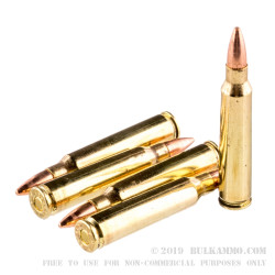 20 Rounds of .223 Ammo by Federal - 55gr FMJ
