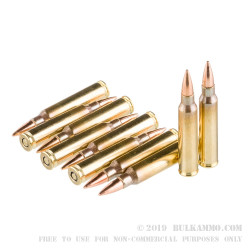 50 Rounds of 5.56x45 Ammo by Magtech - 62gr FMJ