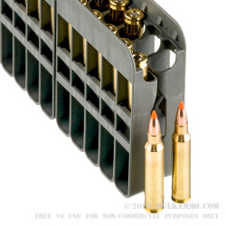 20 Rounds of .223 Ammo by Nosler Ammunition - 40gr Polymer Tip