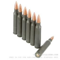 20 Rounds of .223 Ammo by Wolf WPA - 55gr FMJ
