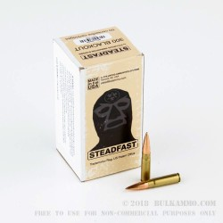 50 Rounds of .300 AAC Blackout Ammo by PNW Arms - 125gr HP