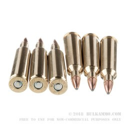 20 Rounds of .22-250 Rem Ammo by Federal Fusion - 55gr SP