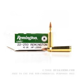 20 Rounds of .22-250 Rem Ammo by Remington - 45 gr JHP