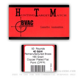 50 Rounds of .40 S&W Ammo by BVAC - 165gr PFP