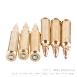 20 Rounds of .223 Ammo by Federal LE Tactical - 55gr SP