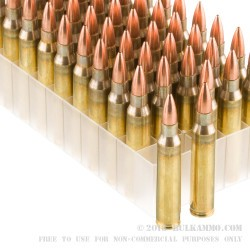 50 Rounds of .223 Ammo by Fiocchi Perfecta - 55gr FMJ