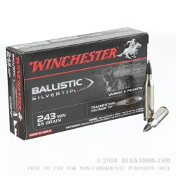 20 Rounds of .243 Win Ammo by Winchester Supreme Ballistic Silvertip - 55gr Polymer Tipped