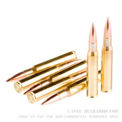 20 Rounds of 30-06 Springfield Ammo (M1 Garand) by Prvi Partizan - 150gr FMJ