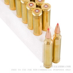 20 Rounds of .300 Win Mag Ammo by Black Hills Gold Ammunition - 178gr Polymer Tipped