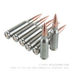 30 Rounds of 5.45x39mm Ammo by Silver Bear - 60gr FMJ