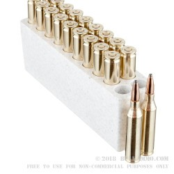 20 Rounds of .243 Win Ammo by Winchester - 100gr PP