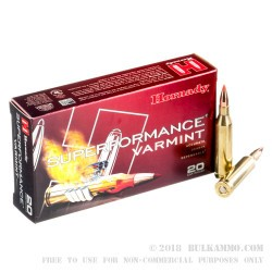 20 Rounds of .243 Win Ammo by Hornady - 75gr V-Max