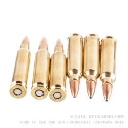 20 Rounds of 5.56x45 Ammo by Barnes Precision Match - 85gr OTM
