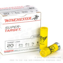 "250 Rounds of 20ga - 2-3/4"" - Ammo by Winchester - 7/8 ounce - #8 shot"