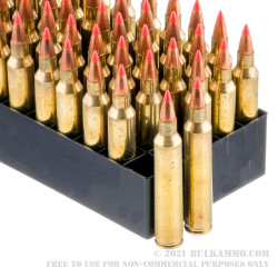 50 Rounds of .204 Ruger Ammo by Fiocchi - 32gr V-MAX