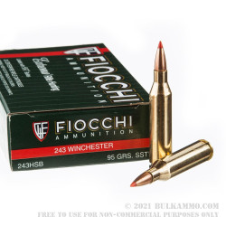 20 Rounds of .243 Win Ammo by Fiocchi - 95gr SST