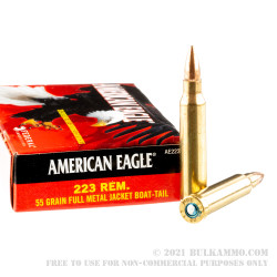 20 Rounds of .223 Ammo by Federal - 55gr FMJBT