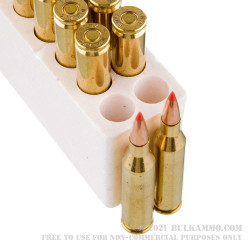 20 Rounds of .243 Win Ammo by Black Hills Gold - 95gr Polymer Tipped