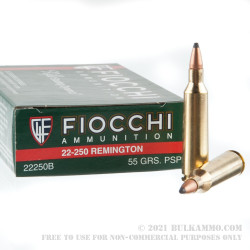 20 Rounds of .22-250 Rem Ammo by Fiocchi - 55gr PSP