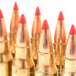 20 Rounds of .223 Ammo by Hornady - 55gr TAP Urban