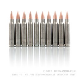 20 Rounds of .223 Ammo by Colt (Silver Bear) - 62gr FMJ
