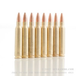 20 Rounds of .223 Ammo by Golden Bear - 62gr HP