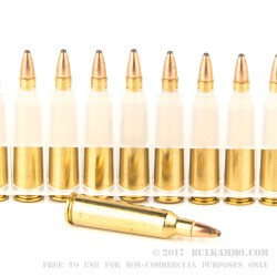 20 Rounds of .22-250 Rem Ammo by Federal - 55gr SP