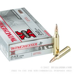 20 Rounds of .243 Win Ammo by Winchester - 80gr SP