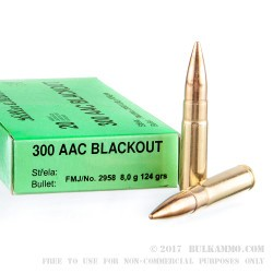 20 Rounds of .300 AAC Blackout Ammo by Sellier & Bellot - 124gr FMJ