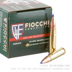 25 Rounds of .300 AAC Blackout Ammo by Fiocchi Extrema - 125gr SST