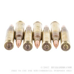 600 Rounds of 5.56x45 Ammo by Federal - 55gr FMJBT