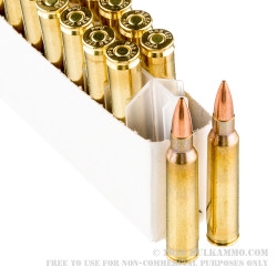 20 Rounds of .223 Ammo by Prvi Partizan - 62gr FMJBT