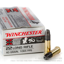500  Rounds of .22 LR Ammo by Winchester - 40gr TC- HP