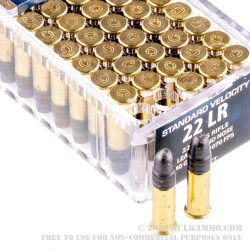 50 Rounds of .22 LR Ammo by CCI Christmas 2016 Gift Pack - 40gr LRN