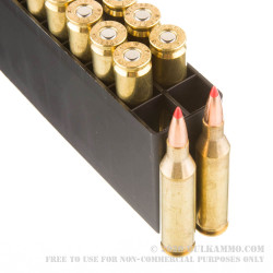20 Rounds of .243 Win Ammo by Hornady Superformance - 80gr GMX