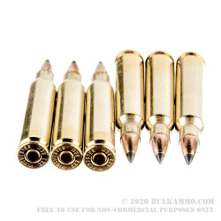 20 Rounds of .223 Ammo by Winchester - 55gr Polymer Tipped