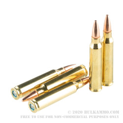 20 Rounds of .223 Rem Ammo by Federal American Eagle - 75gr TMJ