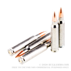 20 Rounds of .223 Ammo by Silver Bear - 55gr FMJ