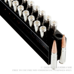 200 Rounds of .300 AAC Blackout Ammo by Remington Hog Hammer - 130gr TSX