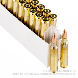 20 Rounds of .223 Ammo by Prvi Partizan - 55gr FMJ