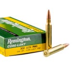 20 Rounds of .300 Win Mag Ammo by Remington Core-Lokt - 150gr PSP