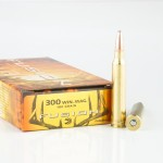 20 Rounds of .300 Win Mag Ammo by Federal - 180gr Fusion