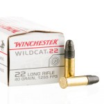 500 Rounds of .22 LR Ammo by Winchester - 40gr LRN